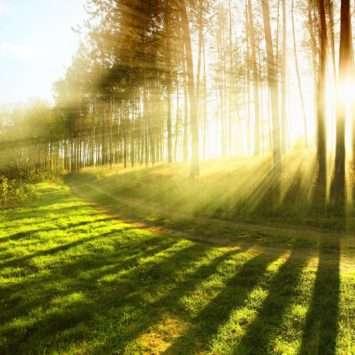 Top 5 bezienswaardigheden Durbuy Ardennen